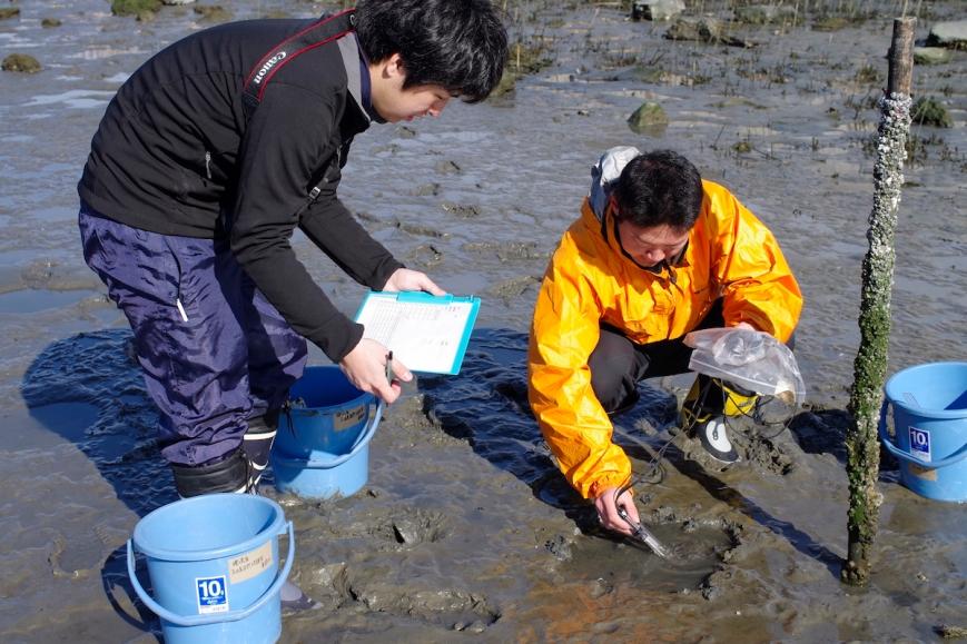 fujimae_tidal_flat_2015021613