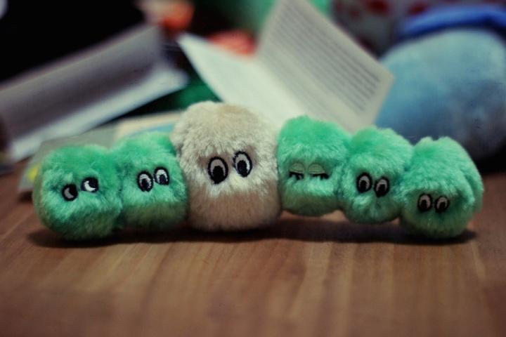 giantmicrobes_algae
