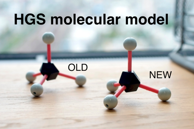 hgs_molecular_model_old_new
